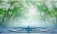 Suyun Önemi İle İlgili Yazı
