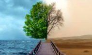 İnsanların Doğaya Verdikleri Zararlar Nelerdir?
