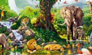 Biyolojik Çeşitliliği Tehdit Eden İnsan Kaynaklı Faktörler Nelerdir?