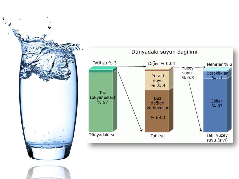 yeryüzündeki su ile ilgili görsel sonucu