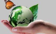 Çevre Kirliliğinin Önlemek İçin Kurulan Kuruluşlar Ve Görevleri