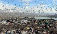 Çevre Kirliliği İle İlgili Sloganlar
