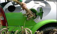 Bitkisel Kaynaklardan Yakıt Üretimi Nedir?