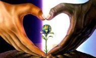 Toplumsal Barış Nedir Nasıl Sağlanır?