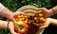Organik Tarımın Amacı Nedir?