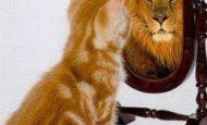 Abartma Sanatı İle İlgili Örnek Cümleler