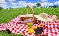 Piknik Yaparken Nelere Dikkat Etmeliyiz Uymamız Gereken Kurallar