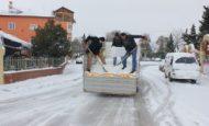 Kışın Neden Yollara Tuz Atılır?