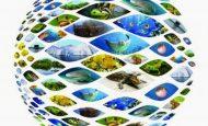 Biyolojinin Bölümleri Nelerdir?