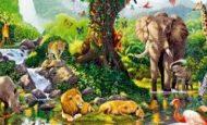 Canlıları Sınıflandırmak Neden Önemlidir?