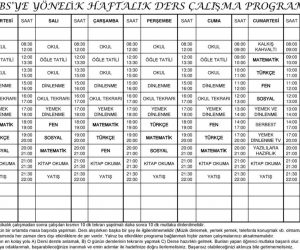 Haftalık Ders Çalışma Programı