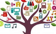 Sivil Toplum Kuruluşları Nelerdir Örnekler