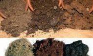 Toprak Çeşitleri Ve Özellikleri Nelerdir?