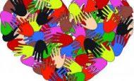 Sivil Toplum Kuruluşlarını Hangi Etkinlik Alanlarına Göre Sınıflandırırsınız?
