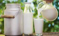 Dünya Süt Günü İle İlgili Yazı (21 Mayıs)