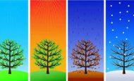 Mevsimler Hakkında Bilgi Sonbahar Kış İlkbahar Yaz Özellikleri