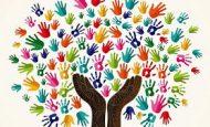 Sivil Toplum Kuruluşlarına Neden İhtiyaç Duyarız.