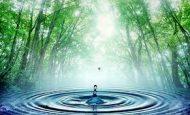 Maden Suyu Ve Kaynak Suyu Arasındaki Fark Nedir?