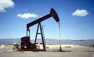 Taş Kömürü Linyit Petrol Ve Tuz Kaçıncı Jeolojik Zamanda Oluşmuştur?