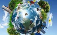Ekosistemi Oluşturan Canlı Ve Cansız Faktörler Nelerdir?