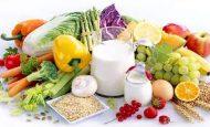 Beslenmenin Canlılar İçin Önemi Nedir?