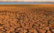 Toprak Oluşumunu Etkileyen Faktörler Nelerdir Kısaca