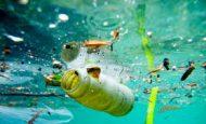 Su Kirliliği İle İlgili Kompozisyon