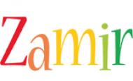 Şahıs Zamiri İle İlgili Örnek Cümleler 10 Tane