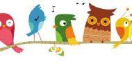 5. Sınıf Türkçe Ders Kitabı Kuş Ağacı Dinleme/İzleme Metni Etkinlik Soruları Ve Cevapları Meb Yayınları Sayfa 242 243 244 245