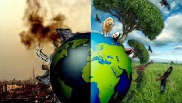 Yaşadığınız Yerde Hava, Toprak ya da Su Kirliliği Yaşanıyor mu? Nedenlerini Araştırınız.