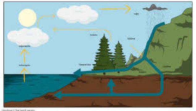 Su Döngüsüne İnsanlar Nasıl Müdahale Etmektedir?