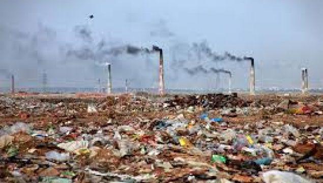 Başlıca Katı Atık Türleri Hangileridir? Bu Atıklar Çevreyi ve İnsan Sağlığını Nasıl Etkilemektedir? Örnekler Veriniz.