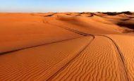Çölde Susuz Kalan Birinin Yaşayacağı Fizyolojik ve Psikolojik Sorunlar Nelerdir?