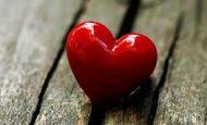 Aşk; Duygu, Bilinç ve Ruhsal Gelişim Seviyesine Göre Her İnsanda Farklı mıdır? Sınıf Ortamında Tartışınız.